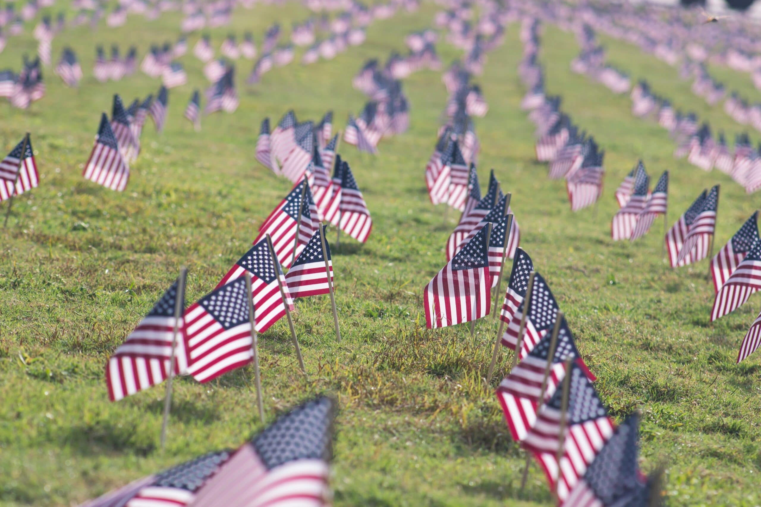 American military flags in ground